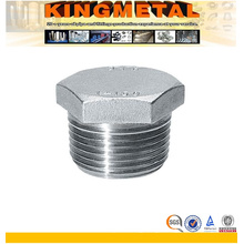 Stainless Steel Hexagonal Male Plug